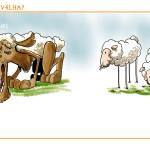 Lobos ou Ovelhas?