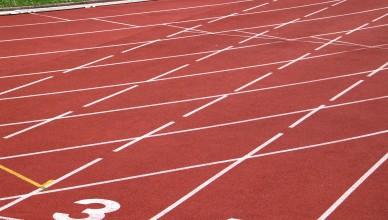 Ganhar o quê com a perseverança?