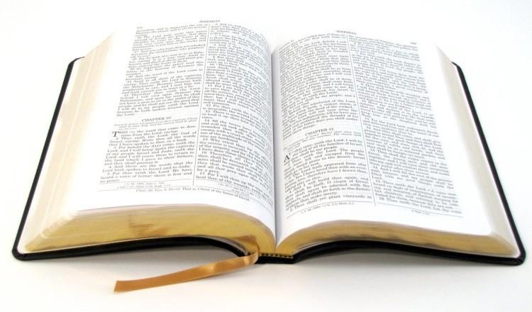 princípio da obediência